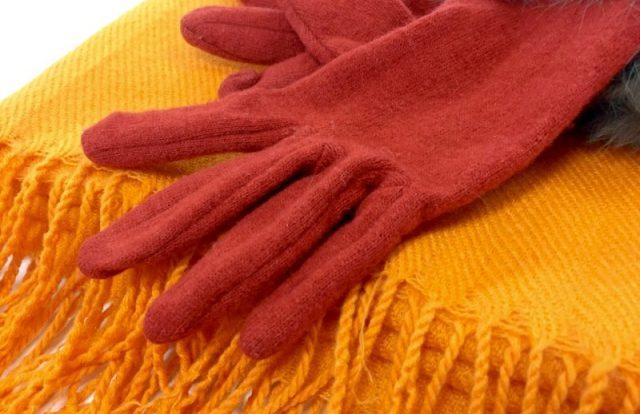 爪水虫の治療は秋~冬~春がチャンス